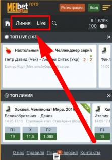 как сделать ставку через приложение